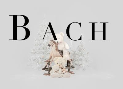 Geschützt: Kämmer Bach