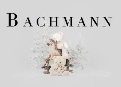 Geschützt: Kämmer Bachmann