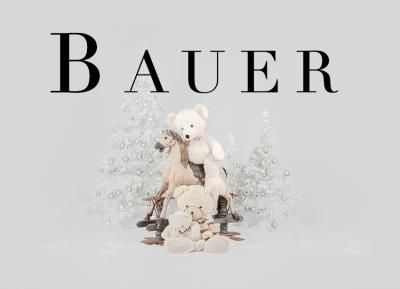 Geschützt: Kämmer Bauer