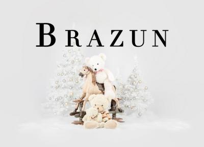 Geschützt: Kämmer Brazun
