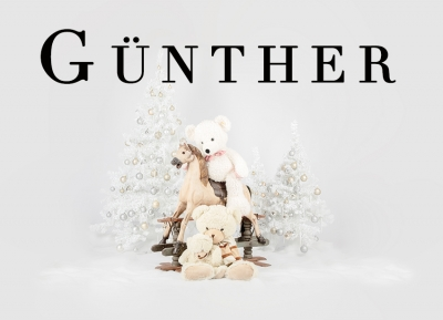 Geschützt: Kämmer Günther