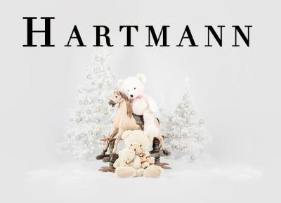 Geschützt: Kämmer Hartmann