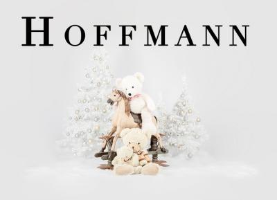 Geschützt: Kämmer Hoffmann