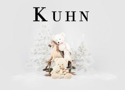 Geschützt: Kämmer Kuhn