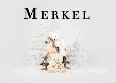 Geschützt: Kämmer Merkel