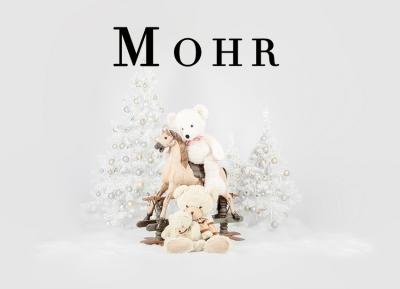 Geschützt: Kämmer Mohr