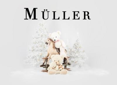 Geschützt: Kämmer Müller