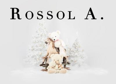 Geschützt: Kämmer Rossol A