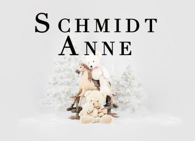 Geschützt: Kämmer Schmidt Anne