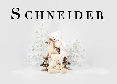 Geschützt: Kämmer Schneider