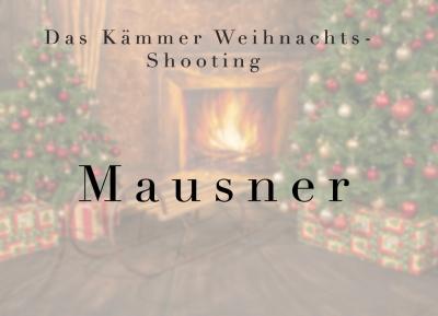 Geschützt: Kämmer Mausner
