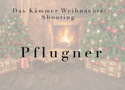 Geschützt: Kämmer Pflugner