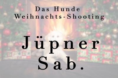 Geschützt: Hunde Jüpner Sab.